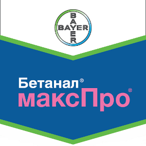 Шеврон Бетанал максПро