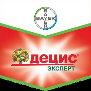 Шеврон Децис Эксперт