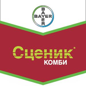 Шеврон Сценик Комби