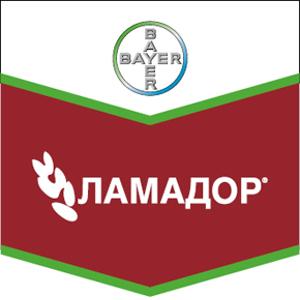 Шеврон Ламадор