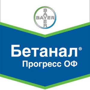 Шеврон Бетанал Прогресс ОФ