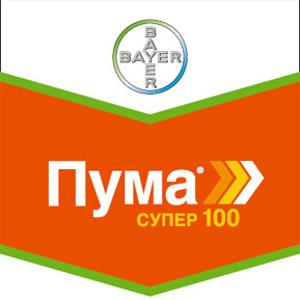 Шеврон Пума Супер 100