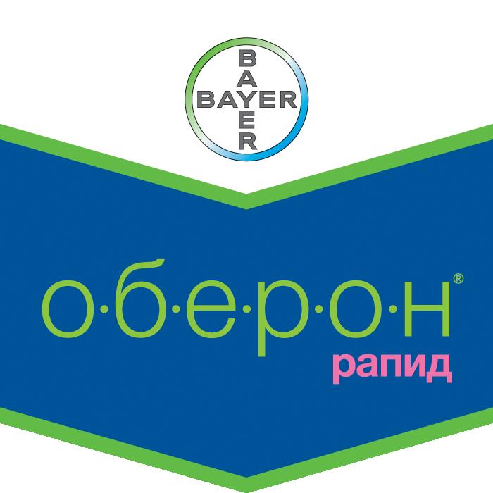 Шеврон Оберон Рапид
